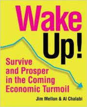 Wake Up!: Survive and Prosper in the Coming Economic Turmoil Jim Mellon Al Chalabi Investor Entrepreneurship Money Investing Economics Finance